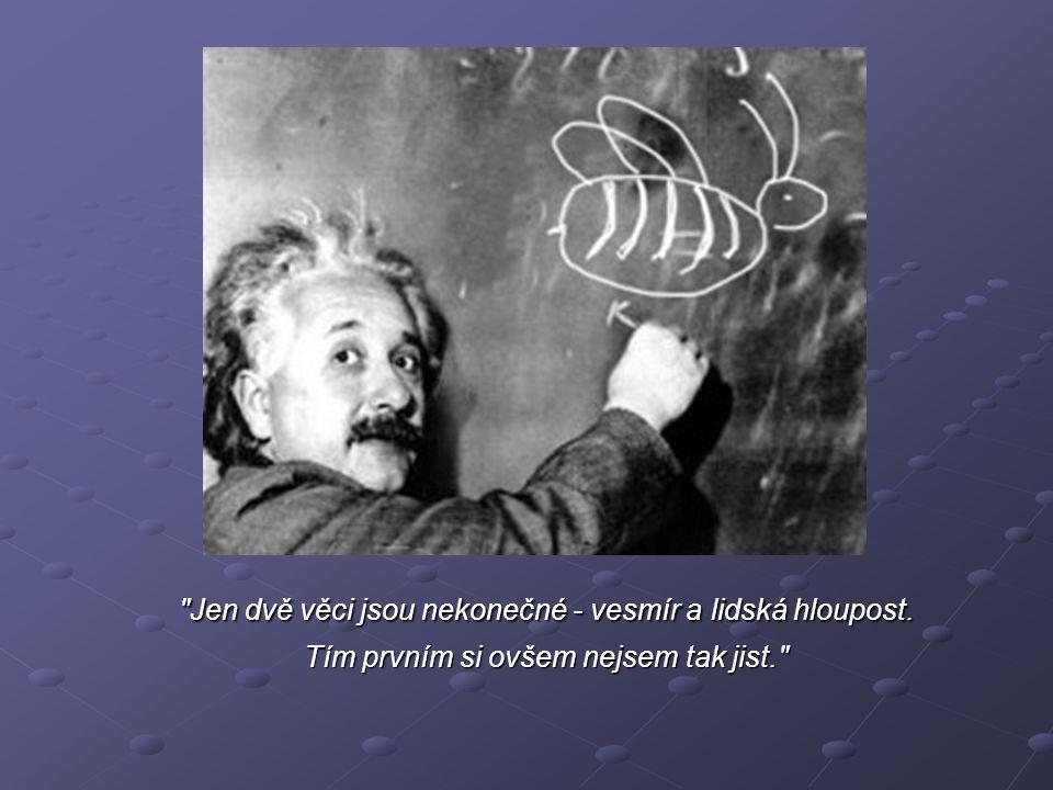 Jen dvě věci jsou nekonečné - vesmír a lidská hloupost. Tím prvním si ovšem nejsem tak jist.
