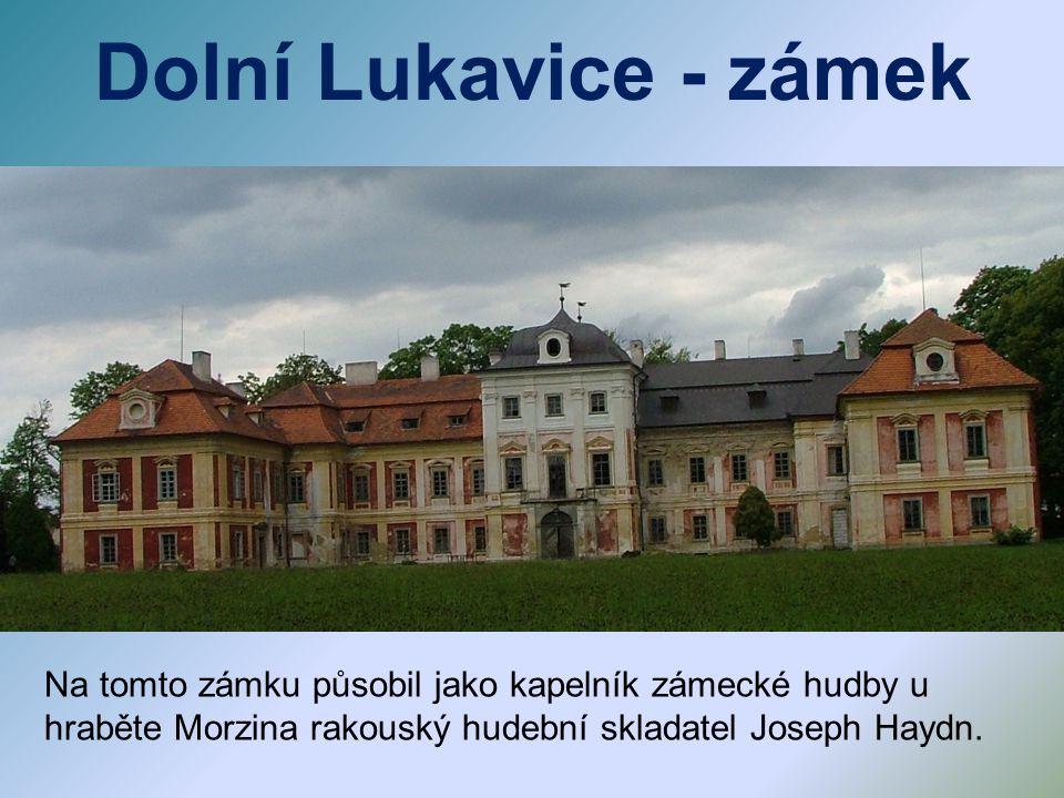 Na tomto zámku působil jako kapelník zámecké hudby u hraběte Morzina rakouský hudební skladatel Joseph Haydn.
