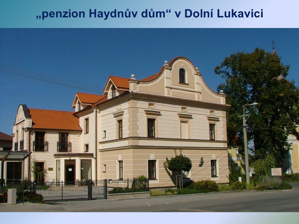 12.9. 2008 byla slavnostně odhalena busta J. Haydna, který v Dolní Lukavici pobýval a komponoval.
