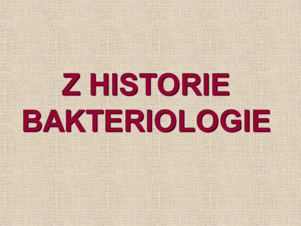 souvislost s vynálezem mikroskopu  první pozorování bakterií 2.