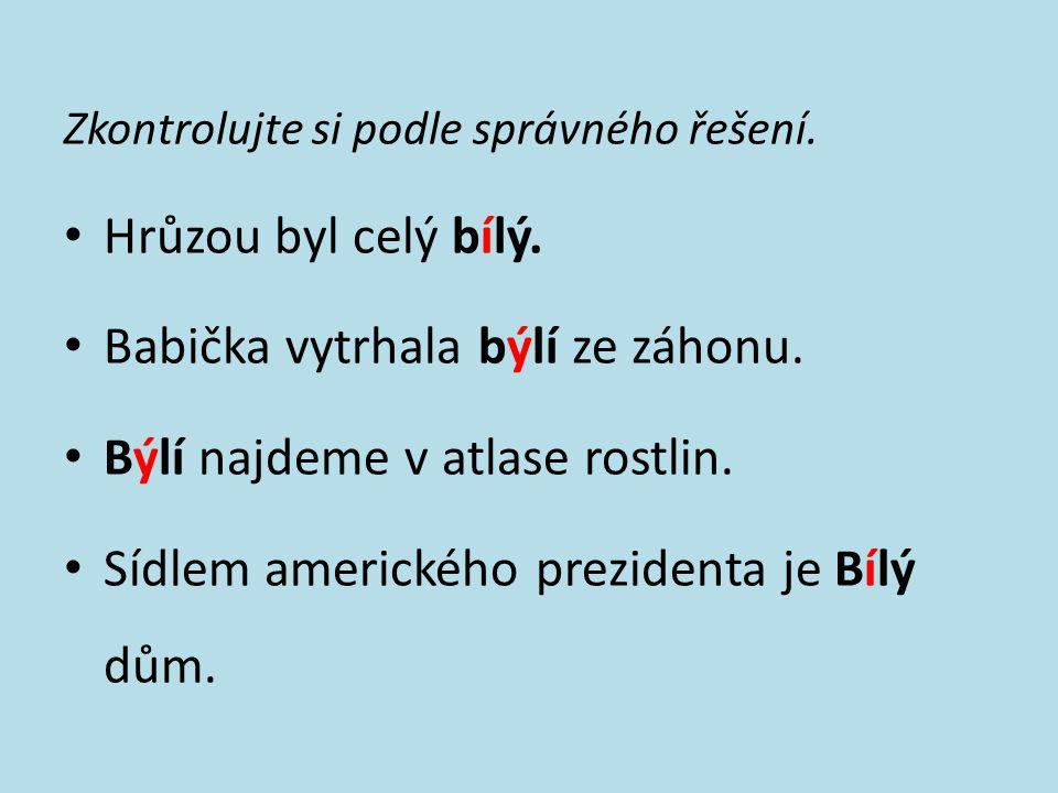 Doplňte i, í/y, ý a věty napište do sešitu.Pálí ho dobré b_dlo.