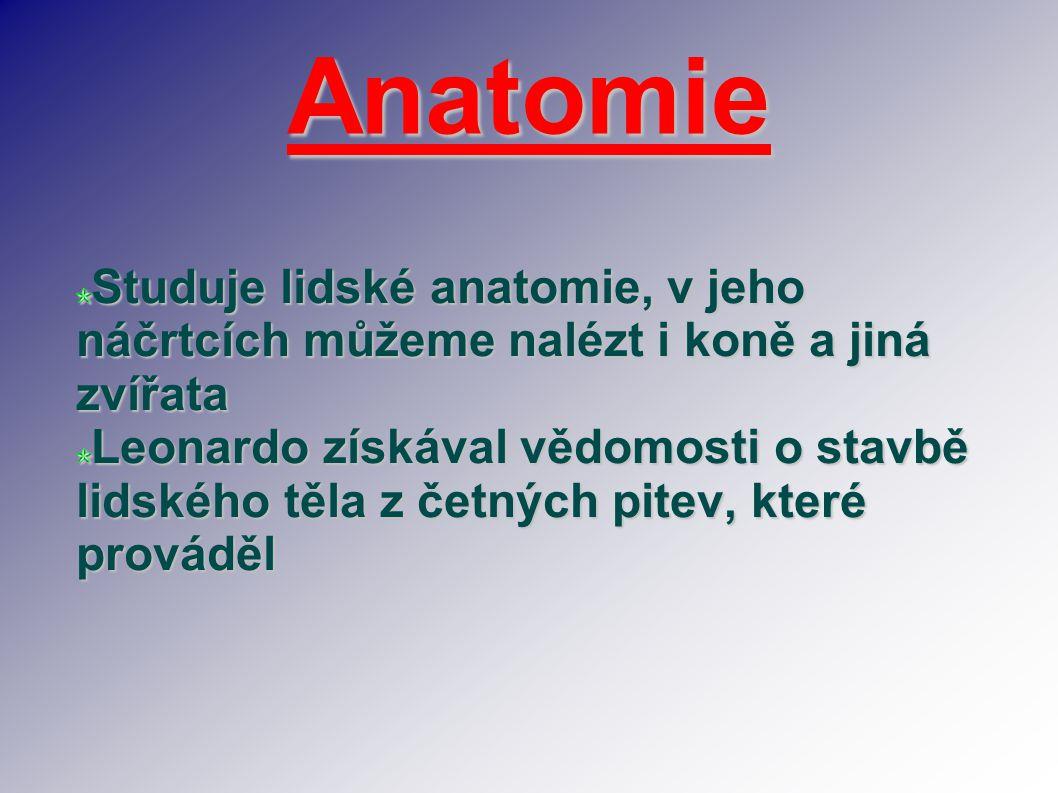 Anatomie Studuje lidské anatomie, v jeho náčrtcích můžeme nalézt i koně a jiná zvířata Leonardo získával vědomosti o stavbě lidského těla z četných pi