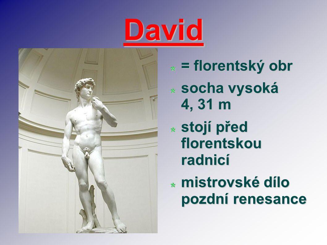 David = florentský obr socha vysoká 4, 31 m stojí před florentskou radnicí mistrovské dílo pozdní renesance