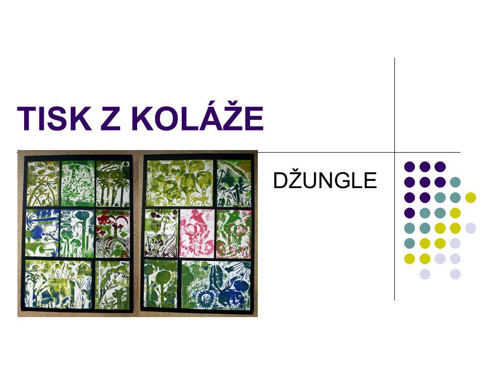 TISK Z KOLÁŽE Téma: Džungle Vzdělávací obor: Výtvarná výchova, 2.st.