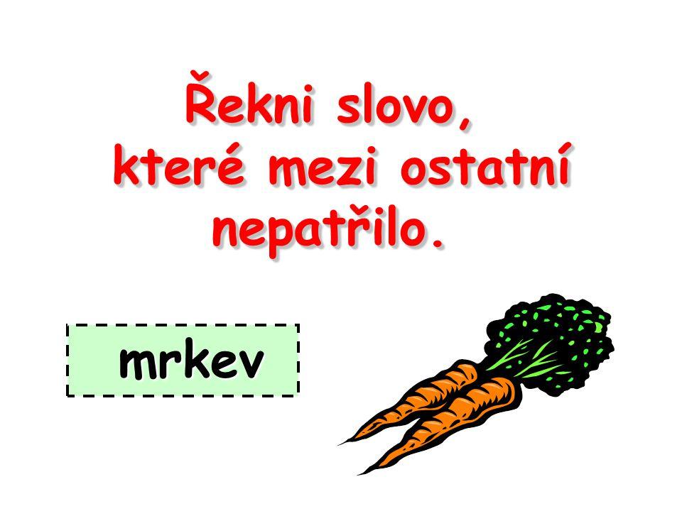 Použité zdroje: Literatura: Hájková Eva, Kočárková Věra.