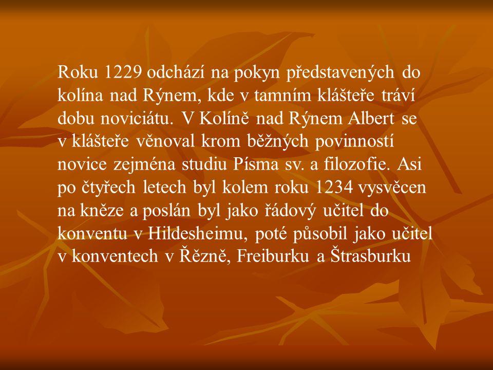 Roku 1229 odchází na pokyn představených do kolína nad Rýnem, kde v tamním klášteře tráví dobu noviciátu. V Kolíně nad Rýnem Albert se v klášteře věno