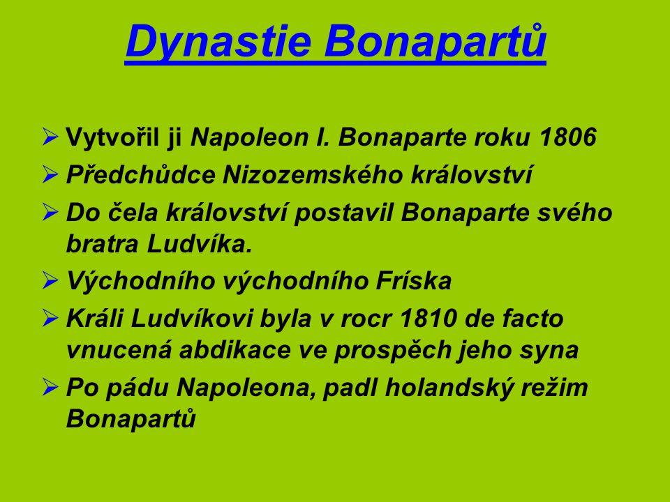 Dynastie Bonapartů  Vytvořil ji Napoleon I. Bonaparte roku 1806  Předchůdce Nizozemského království  Do čela království postavil Bonaparte svého br