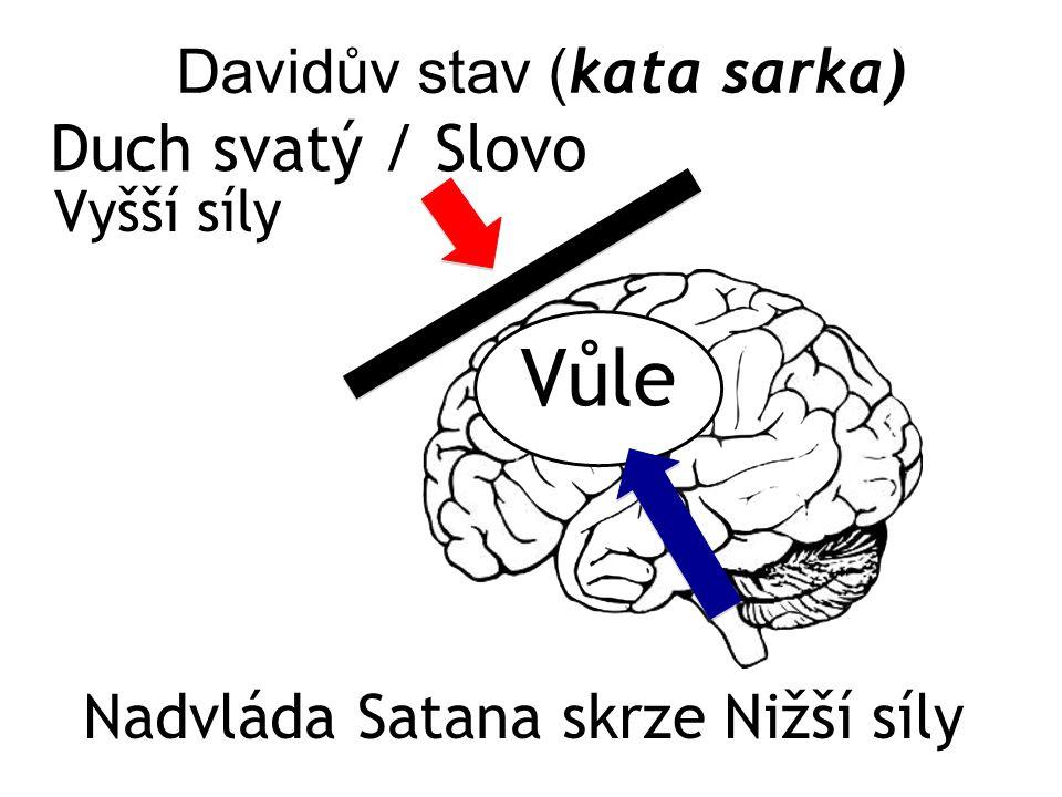 Davidův stav ( kata sarka) Vyšší síly Vůle Duch svatý / Slovo Nadvláda Satana skrze Nižší síly