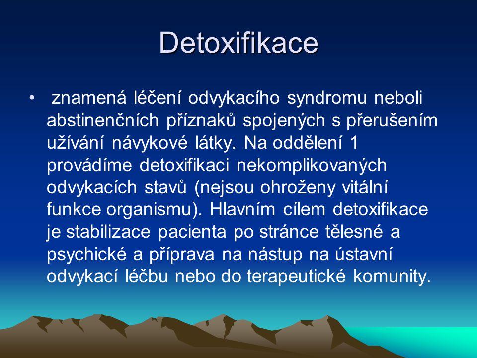Detoxifikace znamená léčení odvykacího syndromu neboli abstinenčních příznaků spojených s přerušením užívání návykové látky. Na oddělení 1 provádíme d