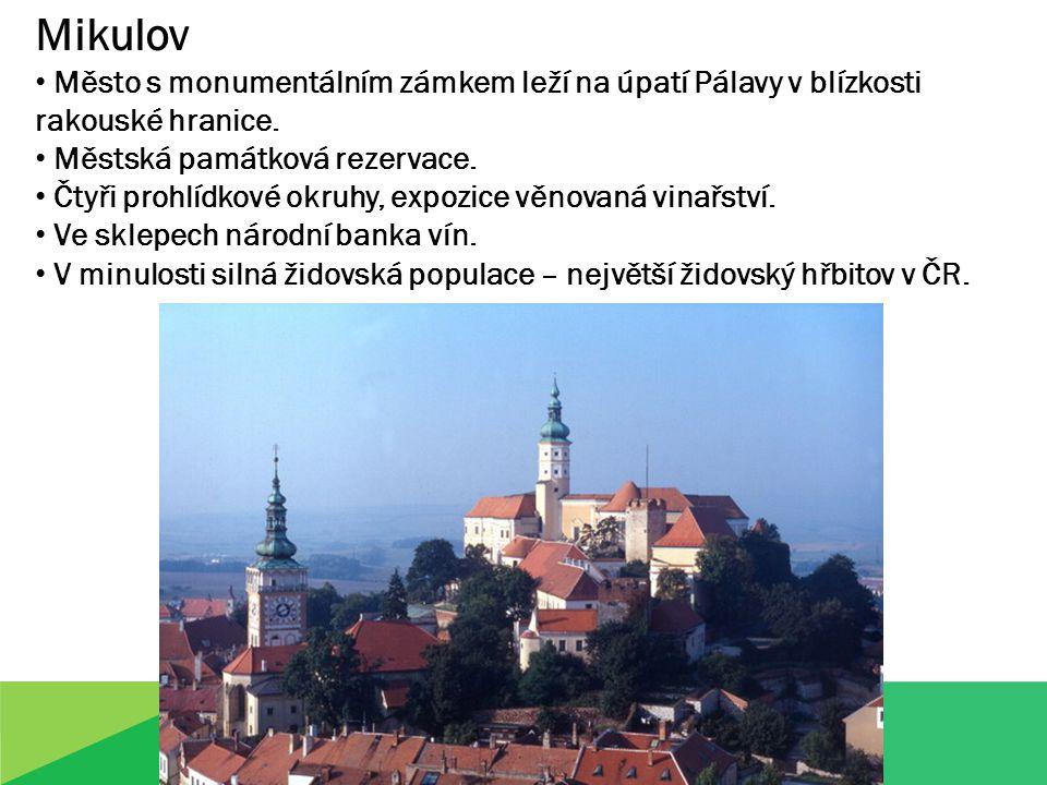 Mikulov Město s monumentálním zámkem leží na úpatí Pálavy v blízkosti rakouské hranice.
