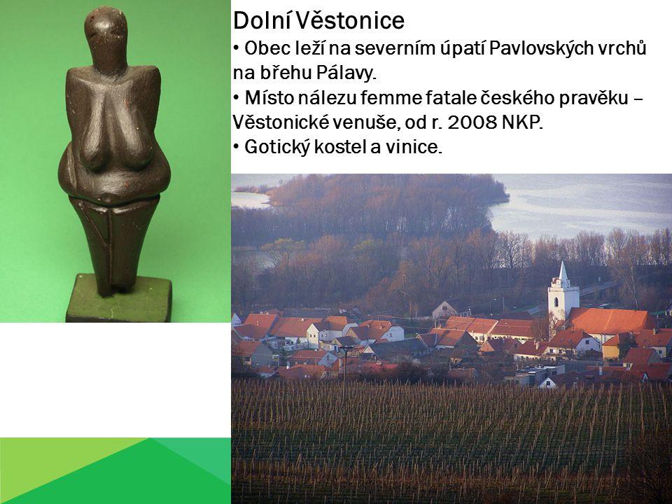 Dolní Věstonice Obec leží na severním úpatí Pavlovských vrchů na břehu Pálavy.