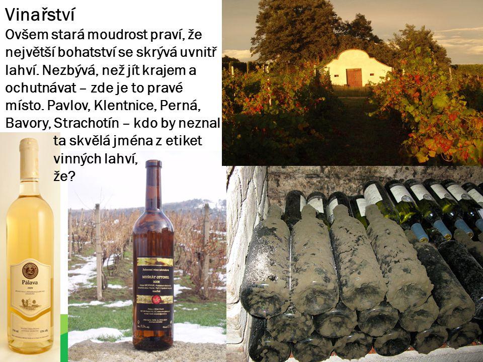 Vinařství Ovšem stará moudrost praví, že největší bohatství se skrývá uvnitř lahví.