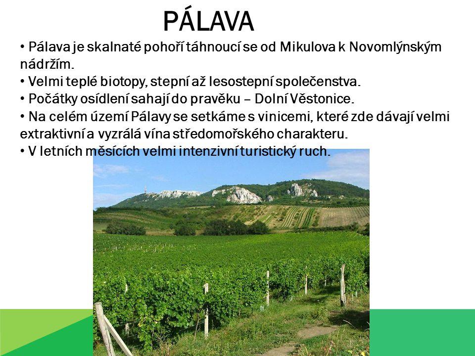 PÁLAVA Pálava je skalnaté pohoří táhnoucí se od Mikulova k Novomlýnským nádržím.
