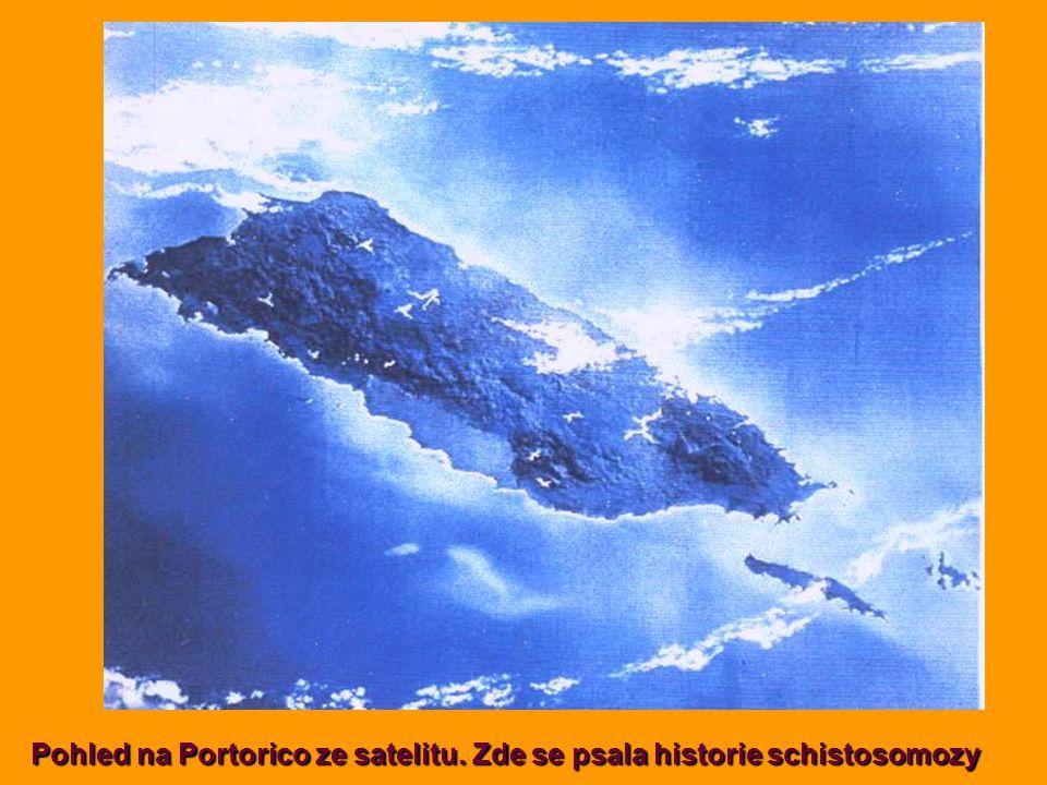 Pohled na Portorico ze satelitu. Zde se psala historie schistosomozy