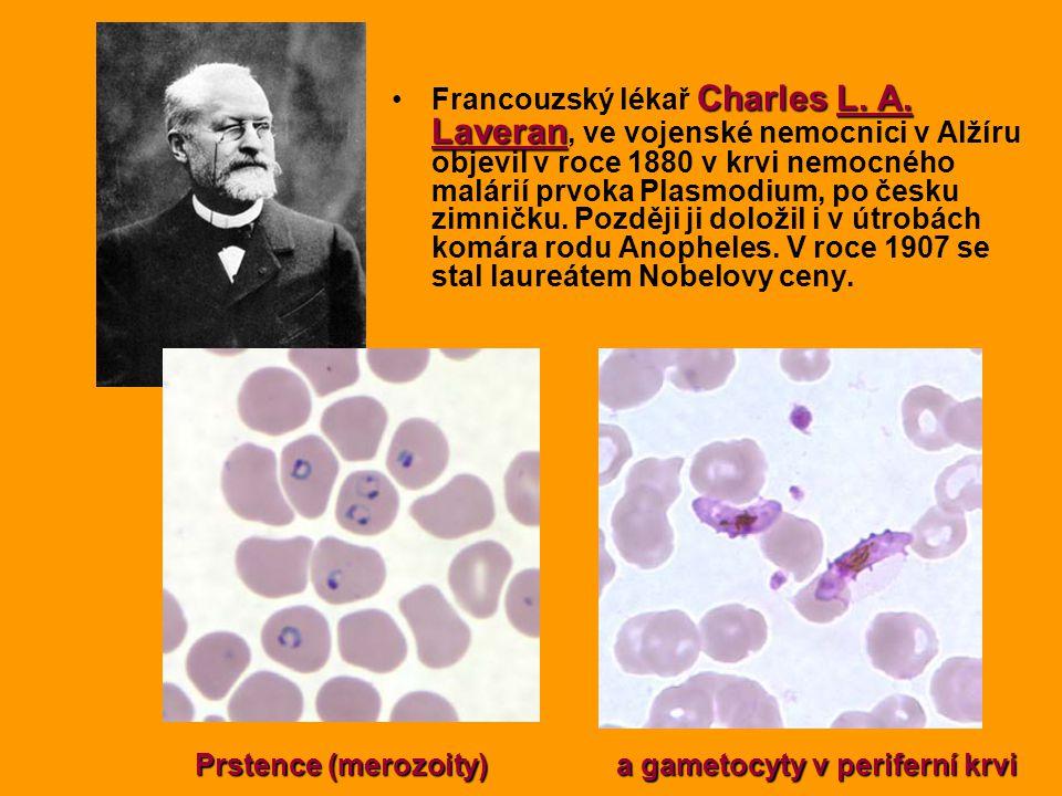 Charles L. A. LaveranFrancouzský lékař Charles L. A. Laveran, ve vojenské nemocnici v Alžíru objevil v roce 1880 v krvi nemocného malárií prvoka Plasm