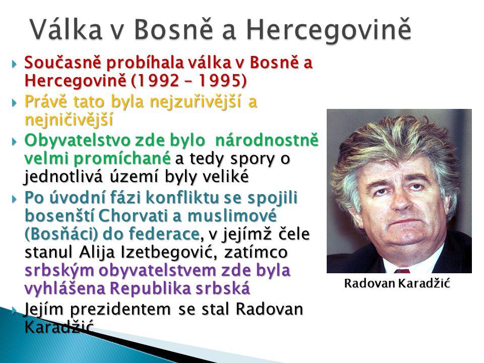  Současně probíhala válka v Bosně a Hercegovině (1992 – 1995)  Právě tato byla nejzuřivější a nejničivější  Obyvatelstvo zde bylo národnostně velmi