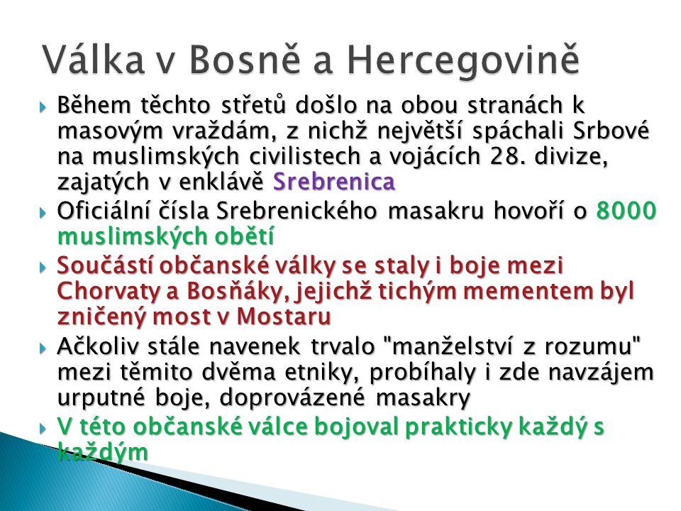  Během těchto střetů došlo na obou stranách k masovým vraždám, z nichž největší spáchali Srbové na muslimských civilistech a vojácích 28. divize, zaj