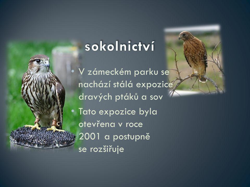 V zámeckém parku se nachází stálá expozice dravých ptáků a sov Tato expozice byla otevřena v roce 2001 a postupně se rozšiřuje