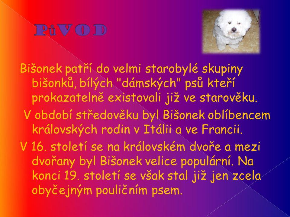 Bišonek patří do velmi starobylé skupiny bišonků, bílých dámských psů kteří prokazatelně existovali již ve starověku.