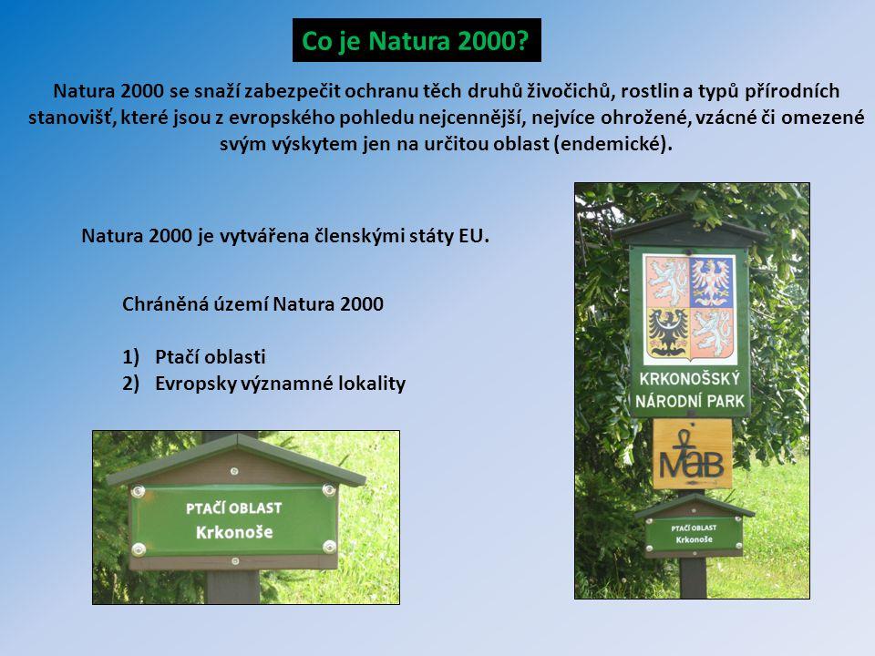 Natura 2000 se snaží zabezpečit ochranu těch druhů živočichů, rostlin a typů přírodních stanovišť, které jsou z evropského pohledu nejcennější, nejvíc