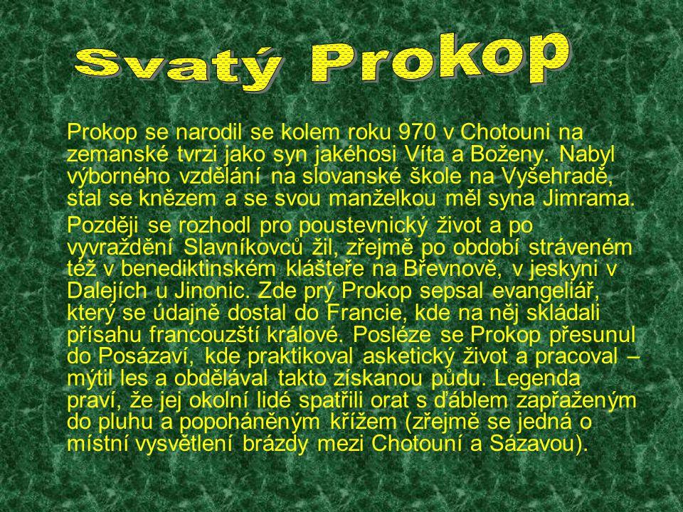 Prokop se narodil se kolem roku 970 v Chotouni na zemanské tvrzi jako syn jakéhosi Víta a Boženy.
