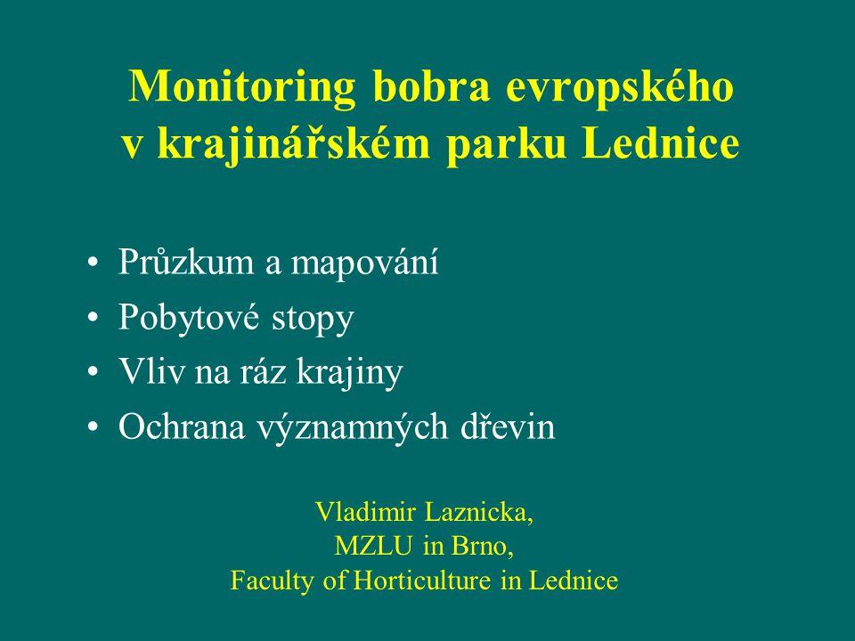 Monitoring bobra evropského v krajinářském parku Lednice Průzkum a mapování Pobytové stopy Vliv na ráz krajiny Ochrana významných dřevin Vladimir Lazn