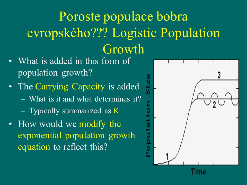 Poroste populace bobra evropského??? Logistic Population Growth What is added in this form of population growth? The Carrying Capacity is added –What
