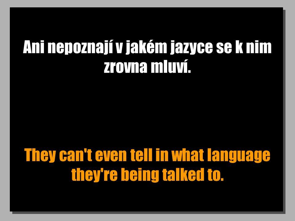 Ani nepoznají v jakém jazyce se k nim zrovna mluví. They can't even tell in what language they're being talked to.