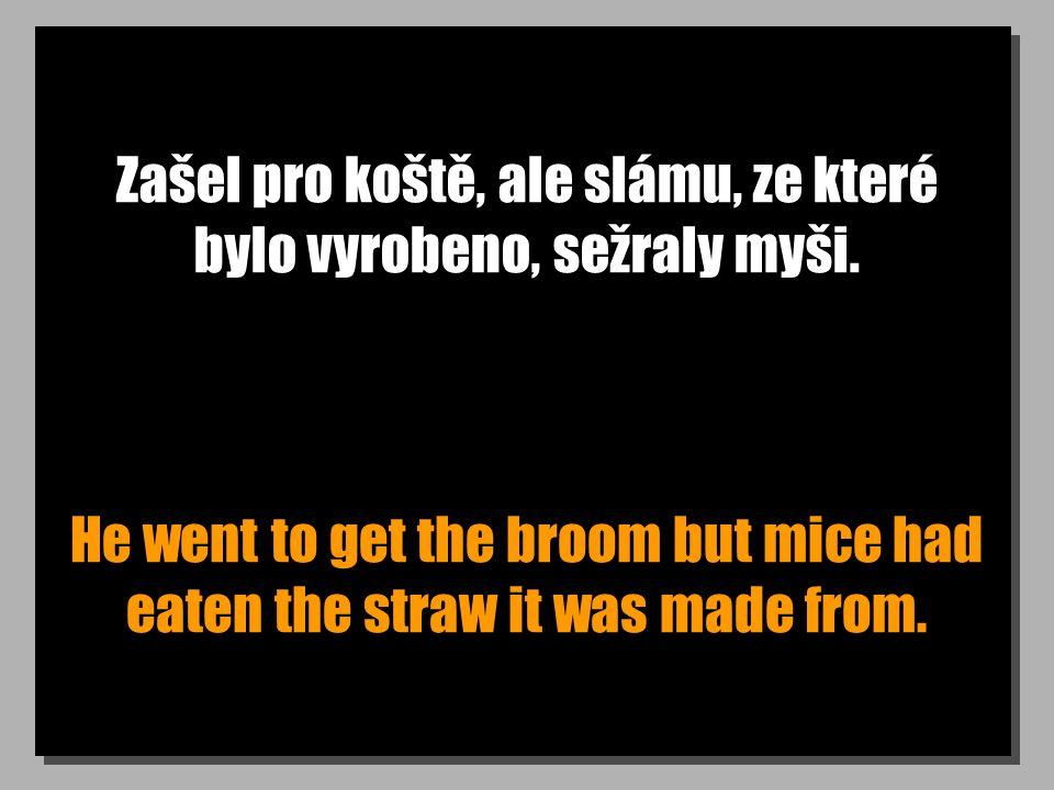 Zašel pro koště, ale slámu, ze které bylo vyrobeno, sežraly myši. He went to get the broom but mice had eaten the straw it was made from.