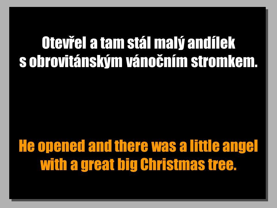 Otevřel a tam stál malý andílek s obrovitánským vánočním stromkem. He opened and there was a little angel with a great big Christmas tree.