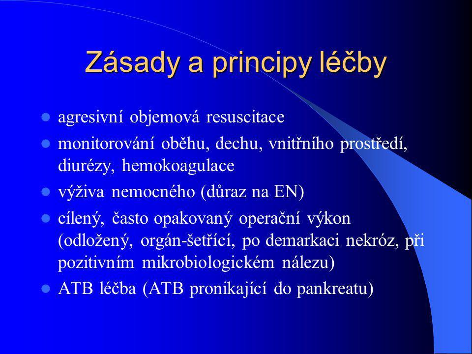 Zásady a principy léčby agresivní objemová resuscitace monitorování oběhu, dechu, vnitřního prostředí, diurézy, hemokoagulace výživa nemocného (důraz