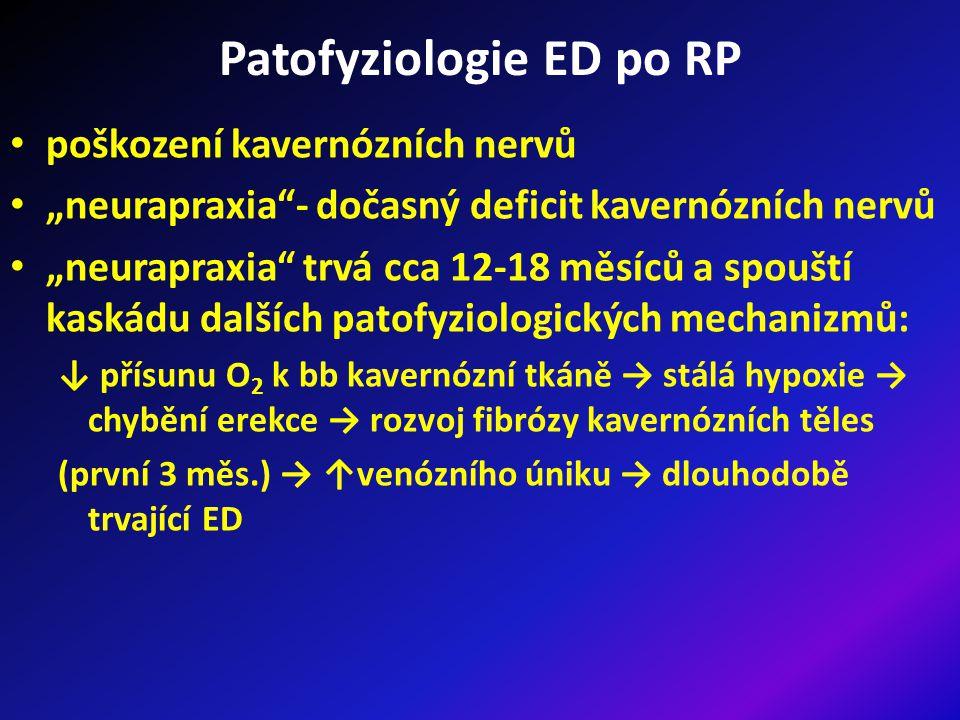 """Patofyziologie ED po RP poškození kavernózních nervů """"neurapraxia - dočasný deficit kavernózních nervů """"neurapraxia trvá cca 12-18 měsíců a spouští kaskádu dalších patofyziologických mechanizmů: ↓ přísunu O 2 k bb kavernózní tkáně → stálá hypoxie → chybění erekce → rozvoj fibrózy kavernózních těles (první 3 měs.) → ↑venózního úniku → dlouhodobě trvající ED"""