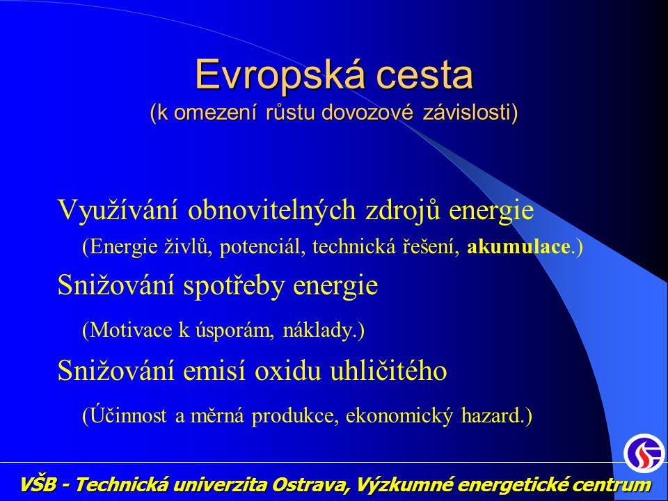 VŠB - Technická univerzita Ostrava, Výzkumné energetické centrum Evropská cesta (k omezení růstu dovozové závislosti) Využívání obnovitelných zdrojů energie (Energie živlů, potenciál, technická řešení, akumulace.) Snižování spotřeby energie (Motivace k úsporám, náklady.) Snižování emisí oxidu uhličitého (Účinnost a měrná produkce, ekonomický hazard.)