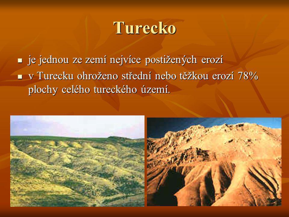 Turecko je jednou ze zemí nejvíce postižených erozí je jednou ze zemí nejvíce postižených erozí v Turecku ohroženo střední nebo těžkou erozí 78% ploch