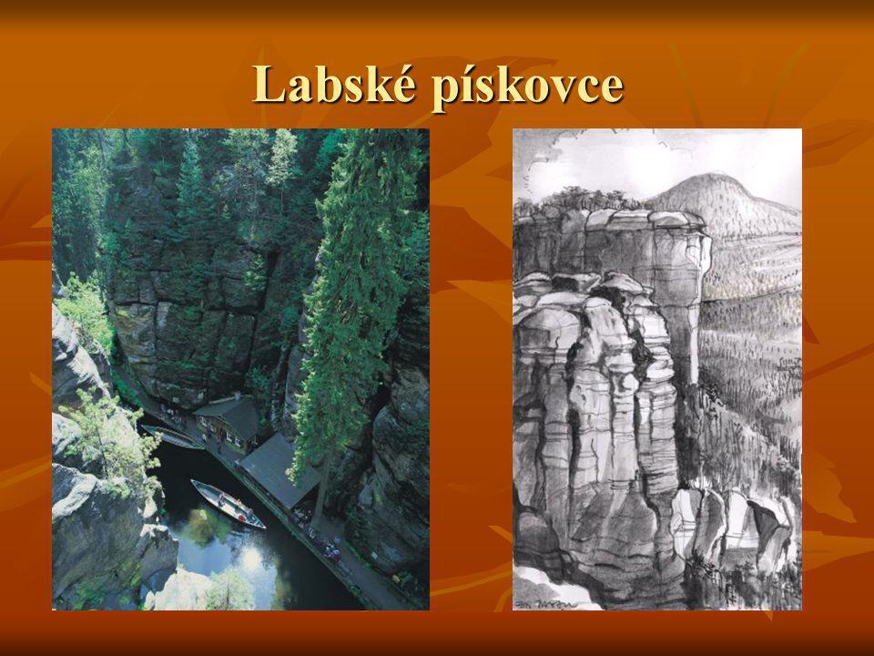 Labské pískovce jsou součástí rozsáhlé jednotky označované jako Český masív.