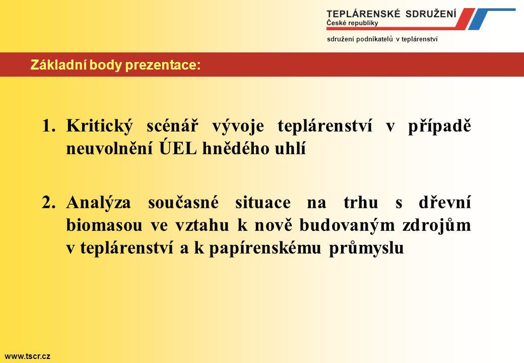 sdružení podnikatelů v teplárenství www.tscr.cz Kritický scénář vývoje teplárenství v případě neuvolnění ÚEL I.