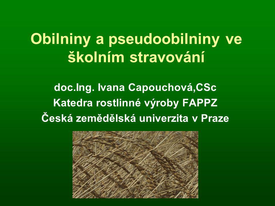 Obilniny a pseudoobilniny ve školním stravování doc.Ing.