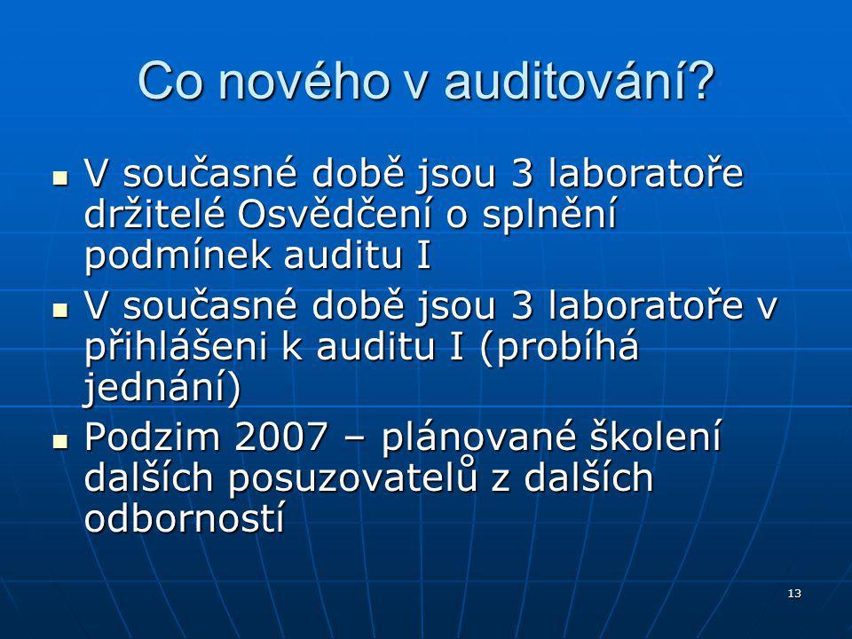 13 Co nového v auditování.