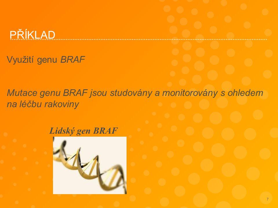 PŘÍKLAD Využití genu BRAF Mutace genu BRAF jsou studovány a monitorovány s ohledem na léčbu rakoviny 7 Lidský gen BRAF