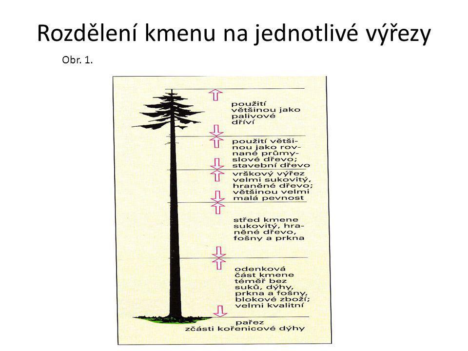 Rozdělení kmenu na jednotlivé výřezy Obr. 1.