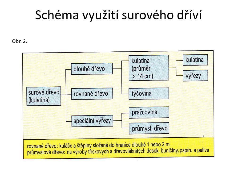 Schéma využití surového dříví Obr. 2.