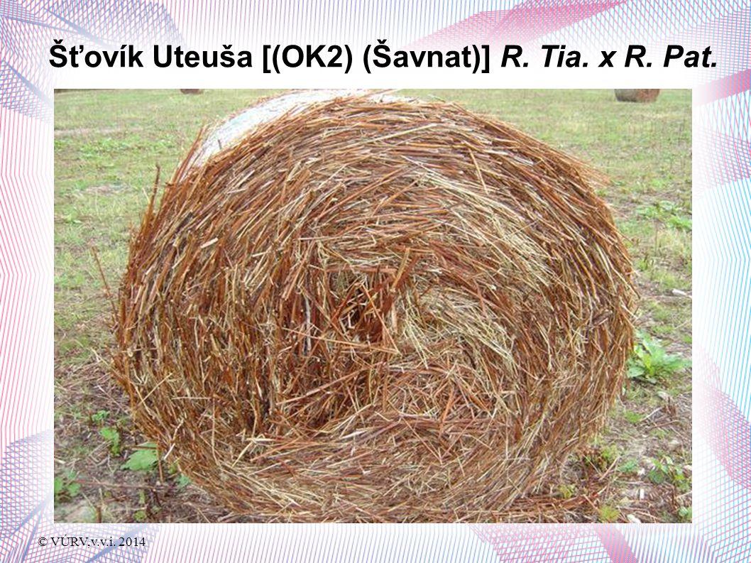 © VÚRV,v.v.i. 2014 Šťovík Uteuša [(OK2) (Šavnat)] R. Tia. x R. Pat.