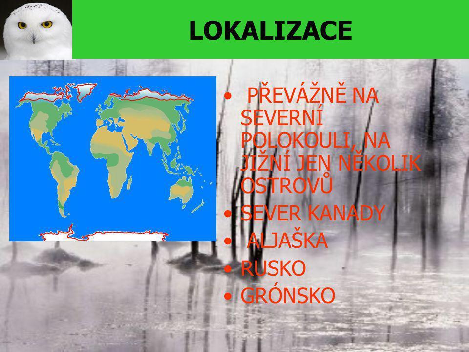 LOKALIZACE PŘEVÁŽNĚ NA SEVERNÍ POLOKOULI, NA JIŽNÍ JEN NĚKOLIK OSTROVŮ SEVER KANADY ALJAŠKA RUSKO GRÓNSKO