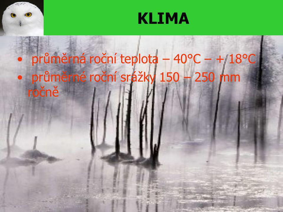 KLIMA průměrná roční teplota – 40°C – + 18°C průměrné roční srážky 150 – 250 mm ročně
