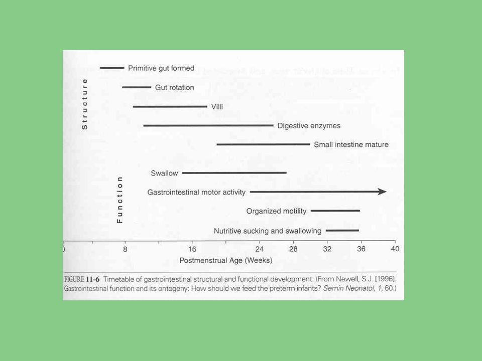 Perfuse GIT Poporodní adaptace kardiovaskulárního systému: - zvrat vysoké plicní a nízké systémové vaskulární resistance plodu - stoupá pO2 krve zásobující střevo