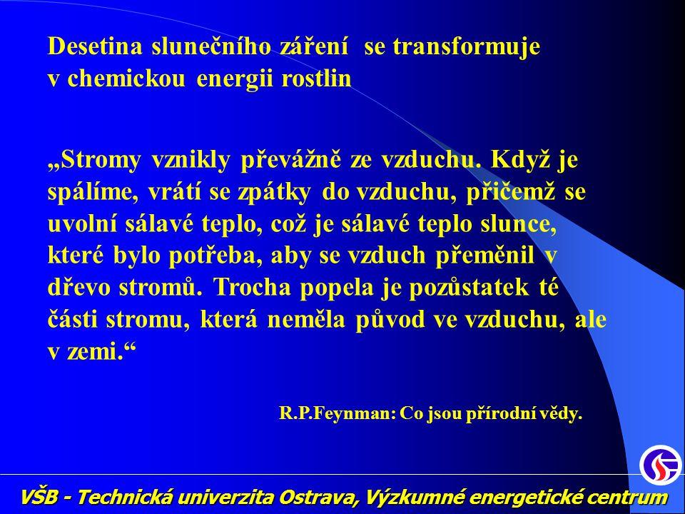 """VŠB - Technická univerzita Ostrava, Výzkumné energetické centrum Desetina slunečního záření se transformuje v chemickou energii rostlin """"Stromy vznikl"""