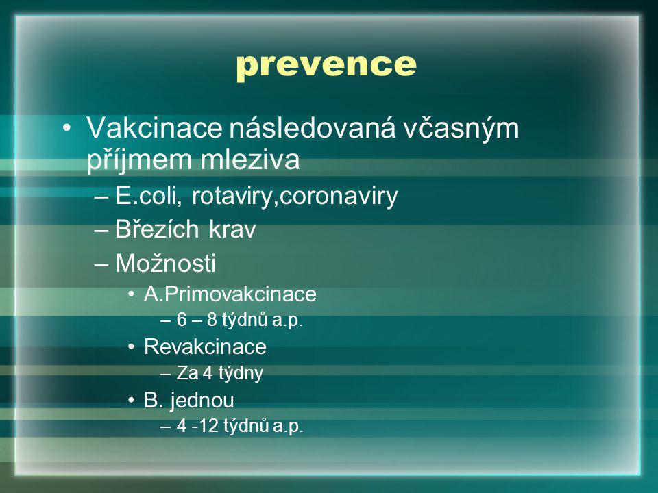prevence Vakcinace následovaná včasným příjmem mleziva –E.coli, rotaviry,coronaviry –Březích krav –Možnosti A.Primovakcinace –6 – 8 týdnů a.p.