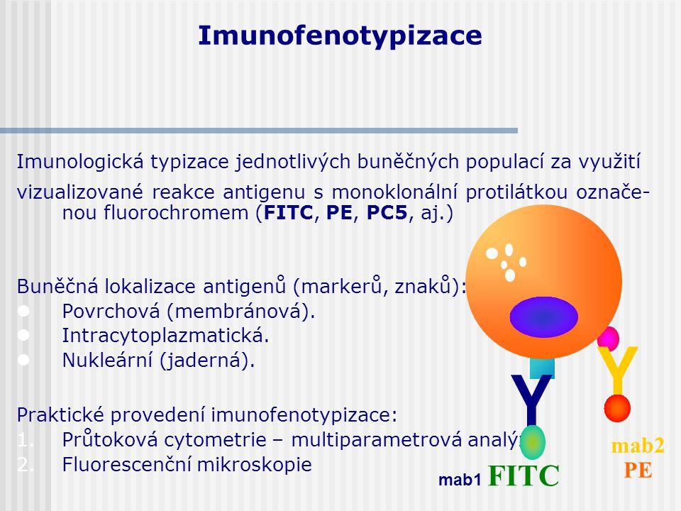 Imunofenotypizace Imunologická typizace jednotlivých buněčných populací za využití vizualizované reakce antigenu s monoklonální protilátkou označe- no