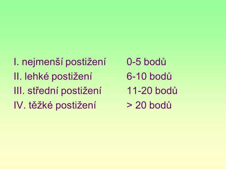 I. nejmenší postižení 0-5 bodů II. lehké postižení6-10 bodů III. střední postižení11-20 bodů IV. těžké postižení> 20 bodů