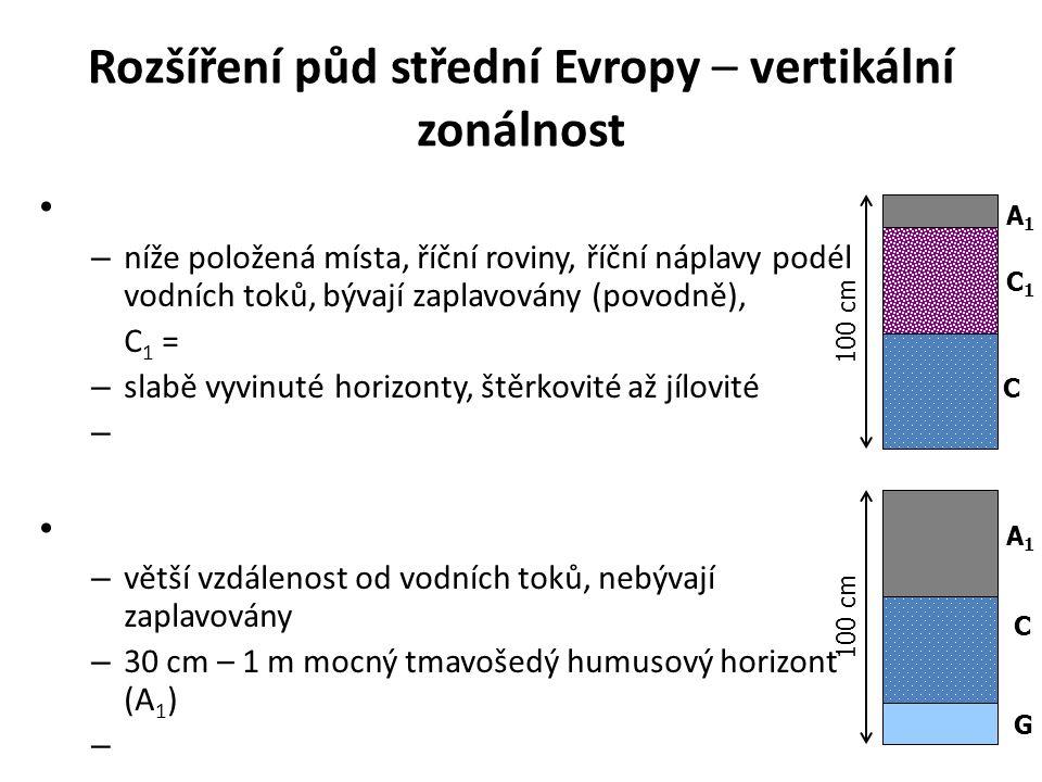 Rozšíření půd střední Evropy – vertikální zonálnost – níže položená místa, říční roviny, říční náplavy podél vodních toků, bývají zaplavovány (povodně), C 1 = – slabě vyvinuté horizonty, štěrkovité až jílovité – – větší vzdálenost od vodních toků, nebývají zaplavovány – 30 cm – 1 m mocný tmavošedý humusový horizont (A 1 ) – 100 cm A1A1 C1C1 C C A1A1 G